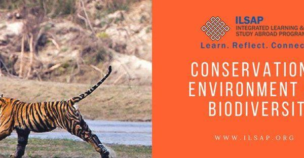 Conservation of Environment and Biodiversity