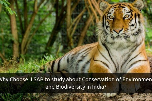 Conservation of Environment and Biodiversity in India